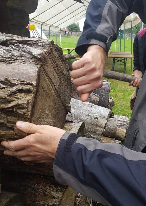 Männerhände an einem Baumstamm